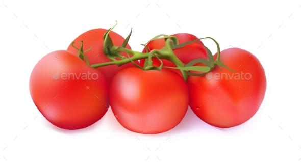 Set of Red Tomatoes on a White Background - Food Objects