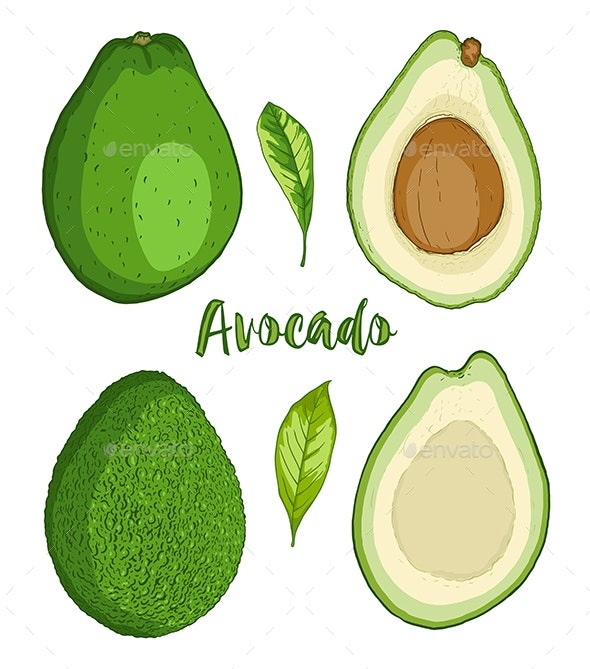 Avocado Fruit on a White Background - Food Objects