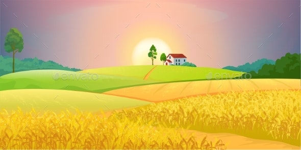 Wheat Fields Village Farm Landscape with Green - Landscapes Nature