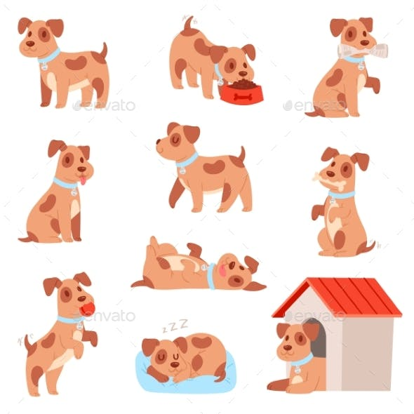 Dog Vector Little Doggie Puppy Animal Character