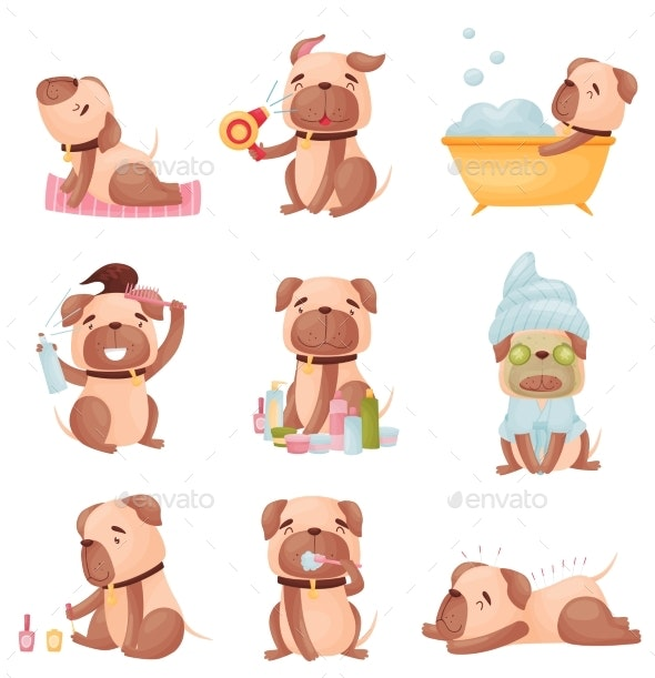 Collection of Cartoon Pugs. Vector Illustration - Animals Characters
