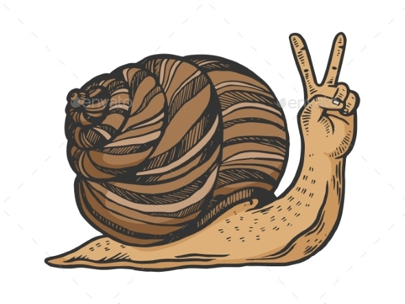 Snail Hand Animal Sketch Engraving - Miscellaneous Characters