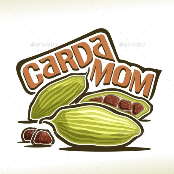 Vector Cardamom - Food Objects