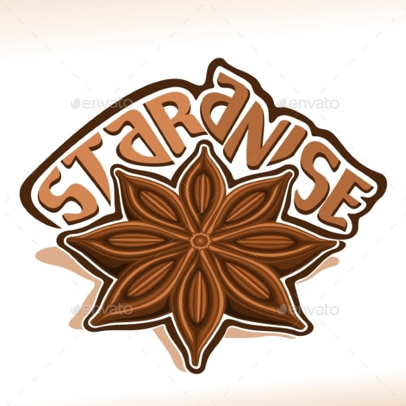 Vector Star Anise - Food Objects