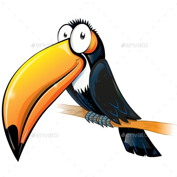 Toucan Character Cartoon Isolated on White Background