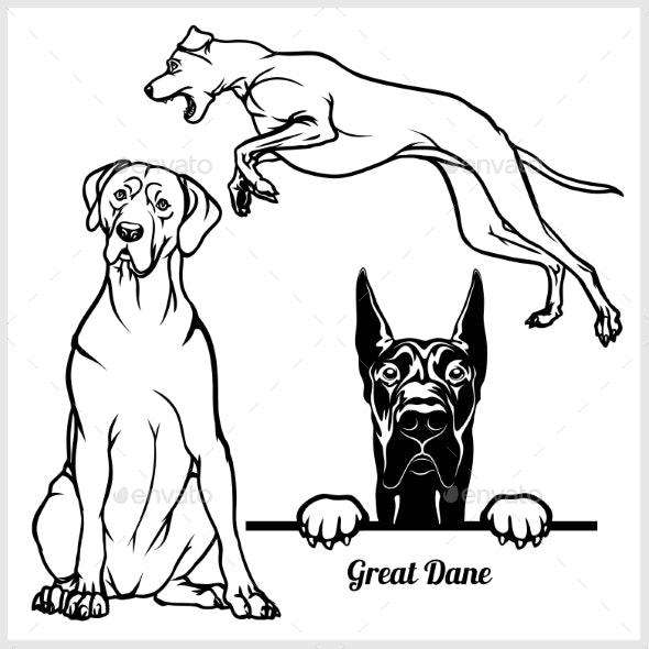 Great Dane Vectors - Animals Characters