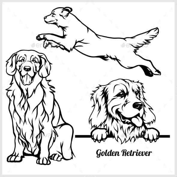 Golden Retriever Vectors