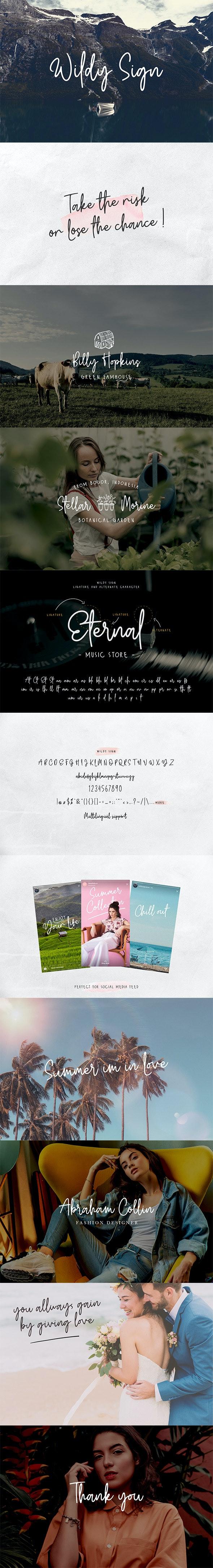 Wildy Sign - Hand-writing Script