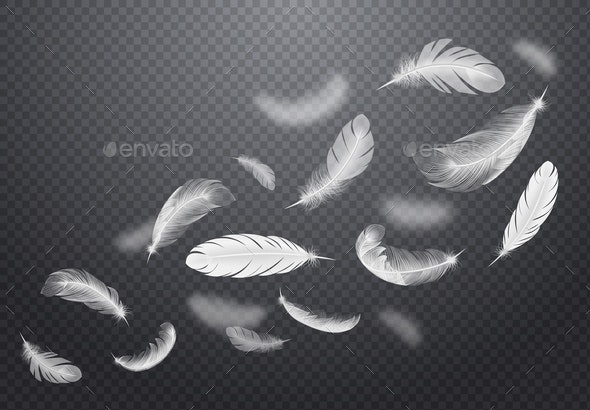 White Falling Feathers Transparent Set - Miscellaneous Vectors