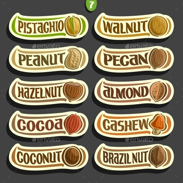 Vector Set of Nuts Labels - Food Objects