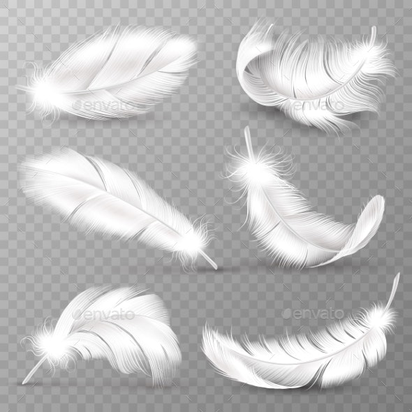 Realistic White Feathers - Animals Characters
