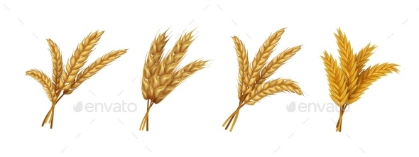 Realistic Wheat - Food Objects
