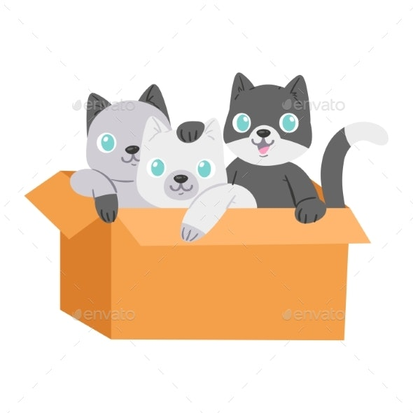 Cats in Box Vector - Animals Characters