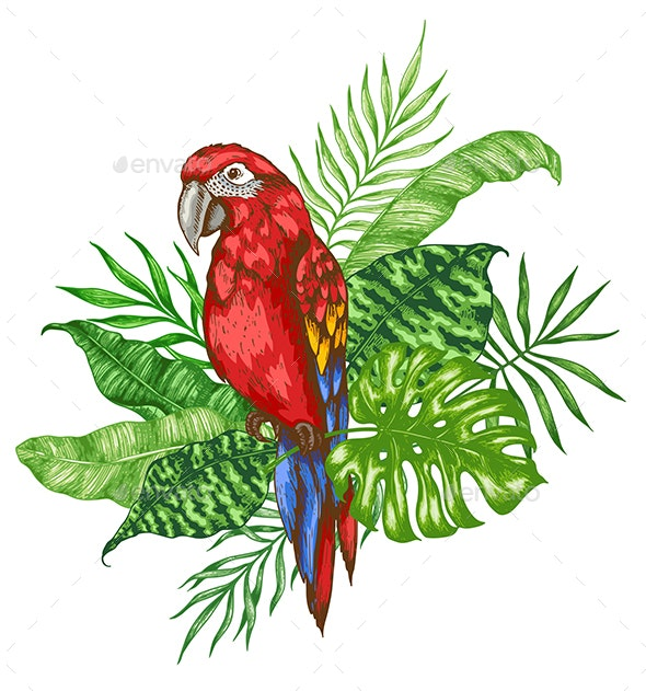 Green Palm Leaves and Red Parrot - Animals Characters