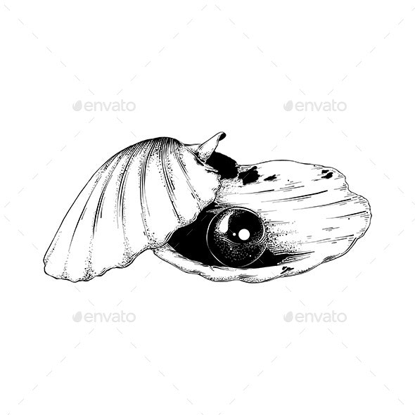 Hand Drawn Sketch of Shell With Pearl - Miscellaneous Vectors
