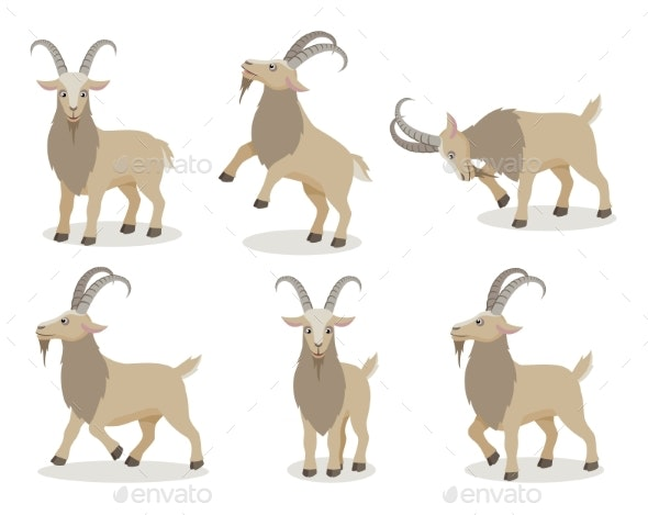 Set of Goat in Different Poses in Flat Style - Animals Characters
