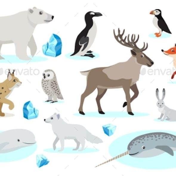 Set of Polar Animals Icons, Isolated on White