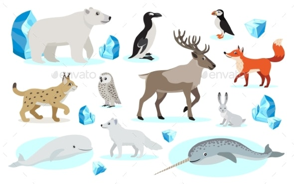 Set of Polar Animals Icons, Isolated on White - Animals Characters