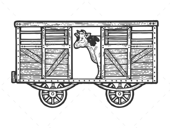 Cow in Railway Carriage Sketch Engraving Vector - Animals Characters