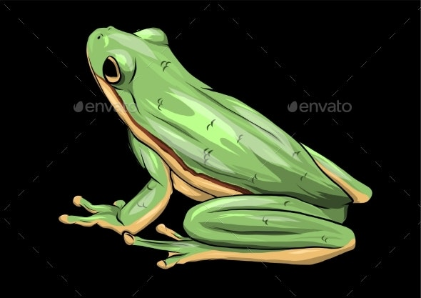 Illustration a Cartoon Green Frog Drawing Vector - Animals Characters