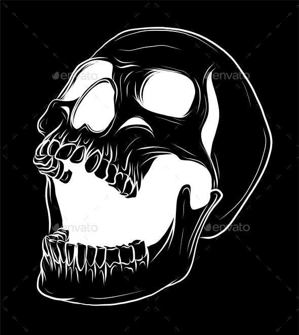 Skull Vector Illustration - Miscellaneous Vectors