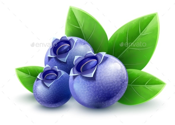 Wild Blueberry Berries with Green Leaves Isolated - Food Objects