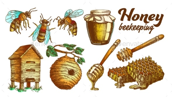 Color Honey Beekeeping Apiary Set Vector - Animals Characters