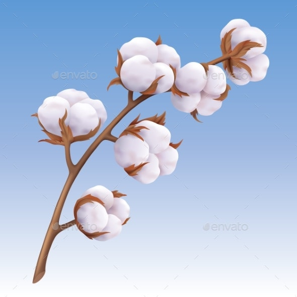Realistic Cotton Branch Isolated on Blue - Flowers & Plants Nature