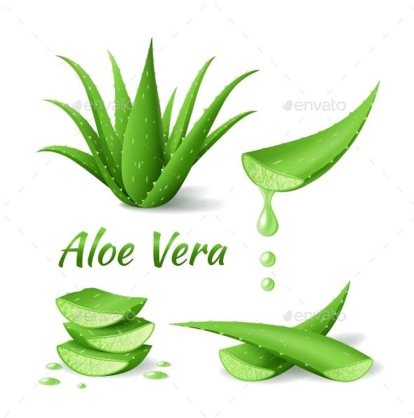 Set of Aloe Vera - Health/Medicine Conceptual