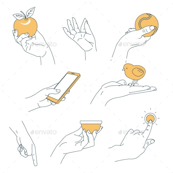 Hand Human Palm Holding Objects Isolated Body Part - Food Objects