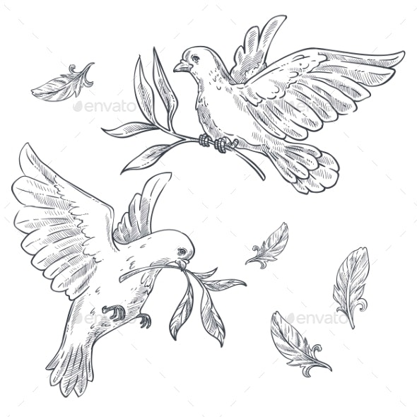 Doves or Pigeons with Olive Branch or Twig in Beak - Animals Characters