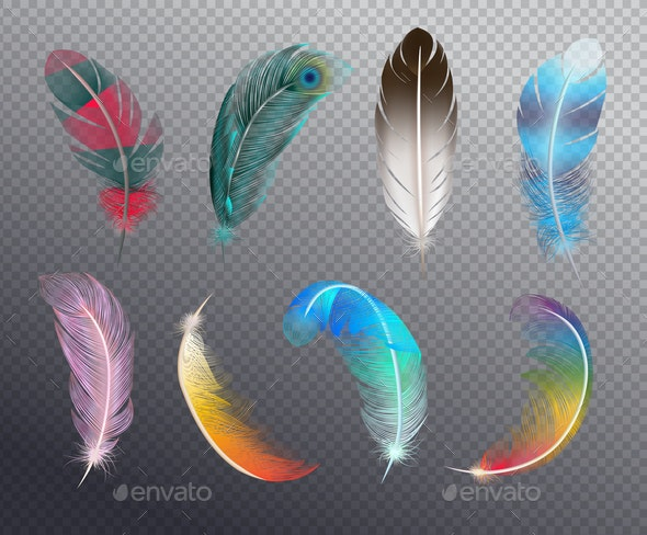 Color Feathers Realistic Set - Miscellaneous Vectors