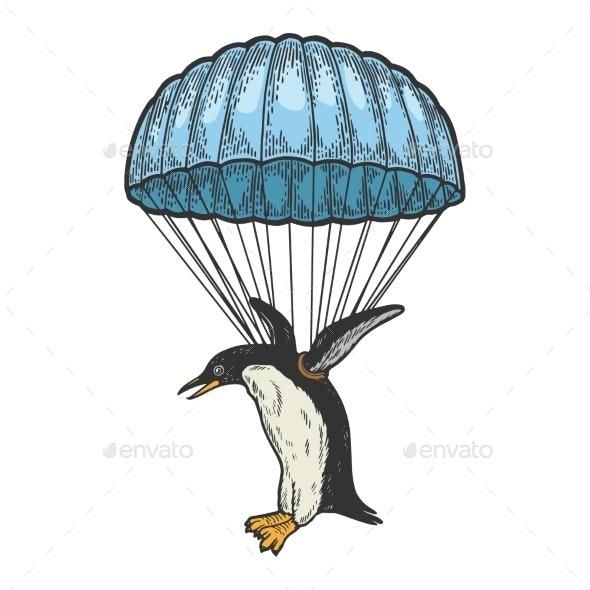 Penguin Bird Flies on Parachute Color Sketch Vector - Sports/Activity Conceptual