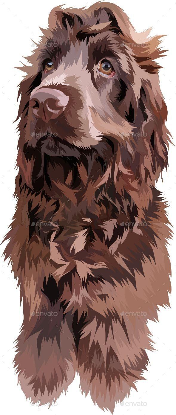 Vector Pet - Animals Characters