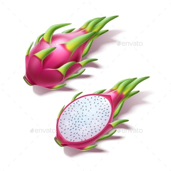 Vector Realistic Pitahaya Dragon Fruit Pitaya 3d