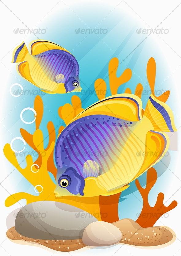 angelfish - Animals Characters