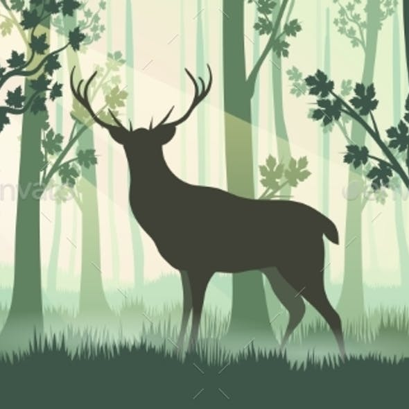 Deer in Forest Silhouette