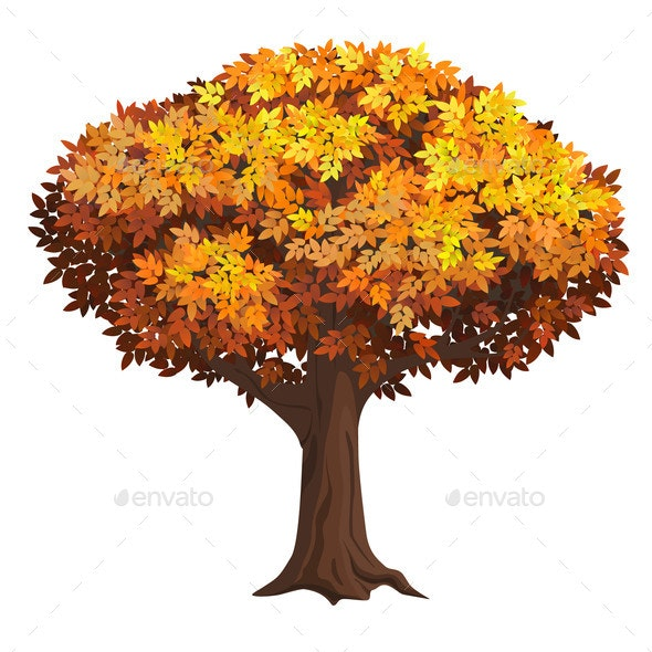 Realistic Isolated Autumn Tree - Flowers & Plants Nature