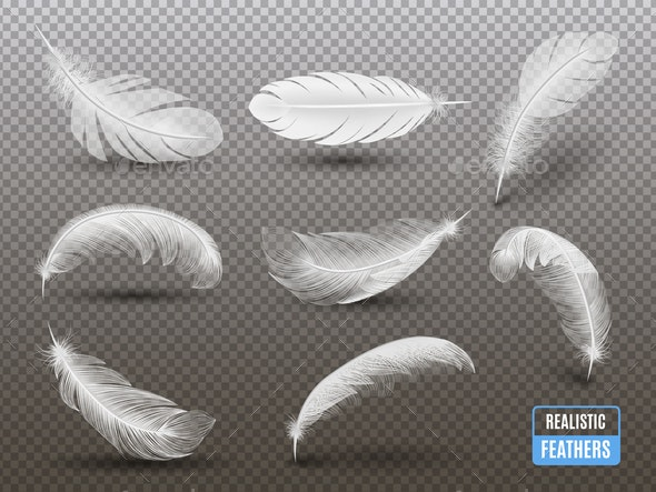 White Feathers Realistic Transparent Set - Miscellaneous Vectors