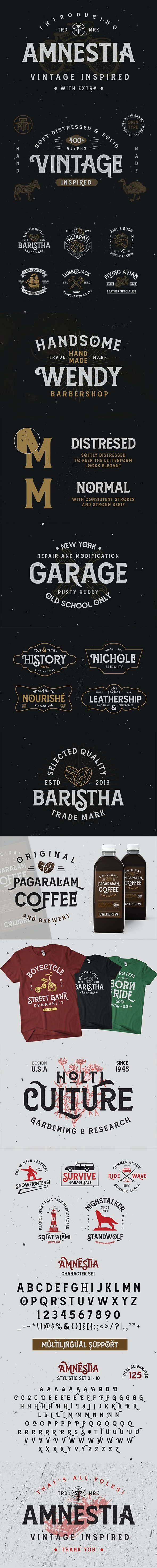 Amnestia Typeface - Grunge Decorative