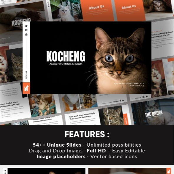 Kocheng - Cat Animal Keynote Template