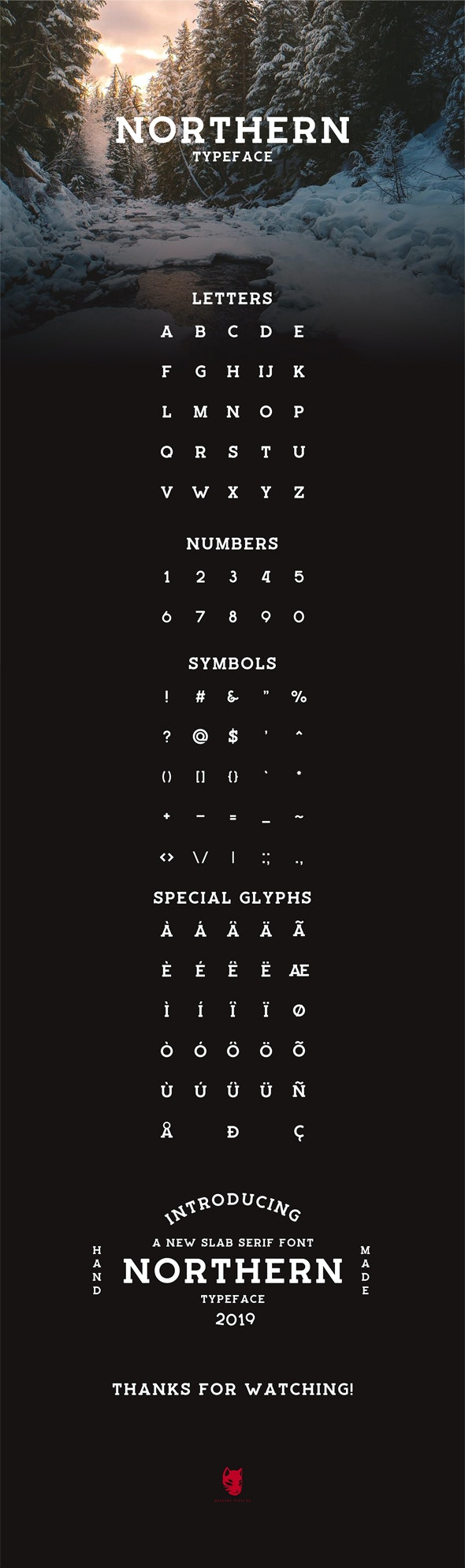 Northern Typeface - Serif Fonts
