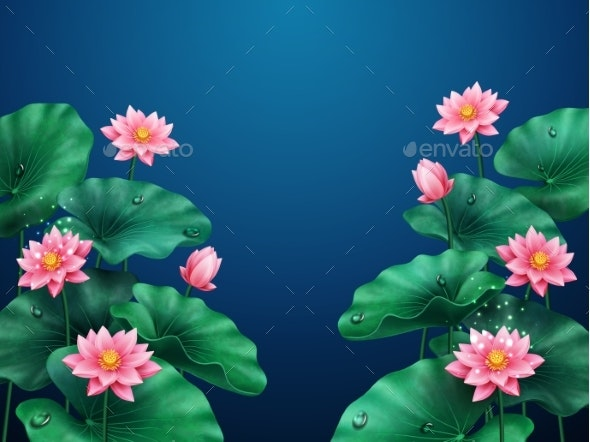 Lotus Flower And Leaves Background On Blue