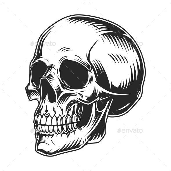 Vintage Skull - Miscellaneous Vectors