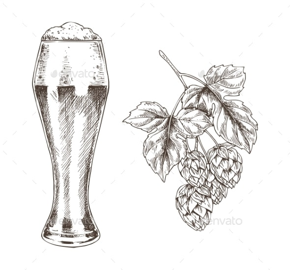 Hop Brunch and Beer Goblet Vector Illustration - Food Objects
