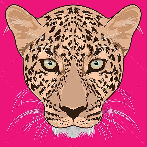 Leopard Head Vector - Animals Characters