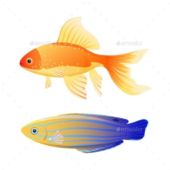 Blue Striped Tamarine and Goldfish Cartoon