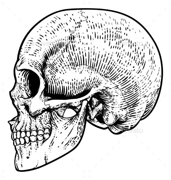 Skull Grim Reaper Vintage Woodcut Illustration - Miscellaneous Vectors