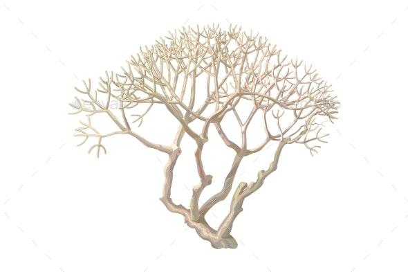 Vector Hand Drawn Plant Clip Art - Flowers & Plants Nature