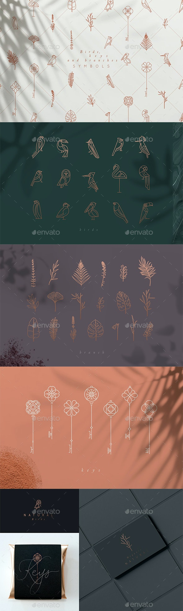 Birds, Keys and Branches Symbols - Decorative Symbols Decorative
